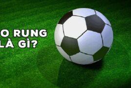 Tìm hiểu về đánh rung trong cược bóng đá